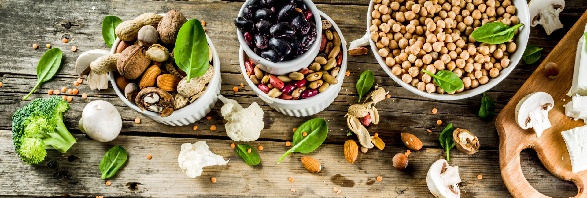 Ernährungsberatung - Vegetarische Ernährung, Pilze, Bohnen, Nüsse, Tofu, Gemüse, Kichererbsen